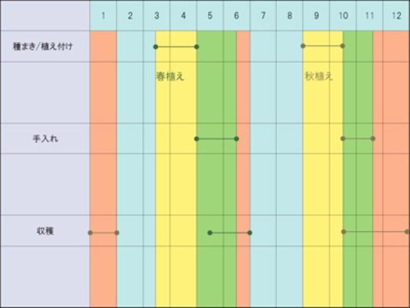 ホウレンソウ栽培カレンダー