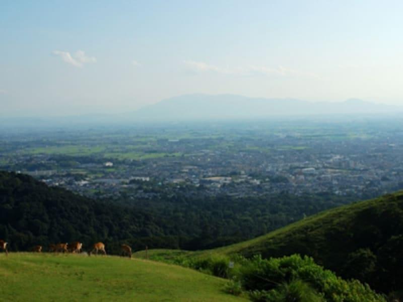 若草山からの風景