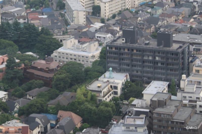 濃いグレーの建物が「目黒ハウス」