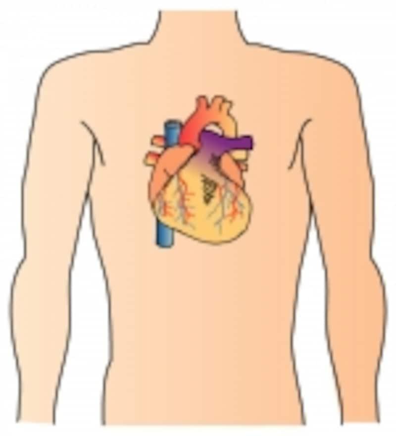 心臓が原因で息切れすることもよくあります。心不全の症状であり、要注意です。