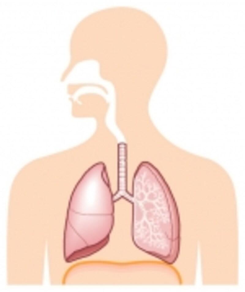 肺が原因で息切れすることはよくあります