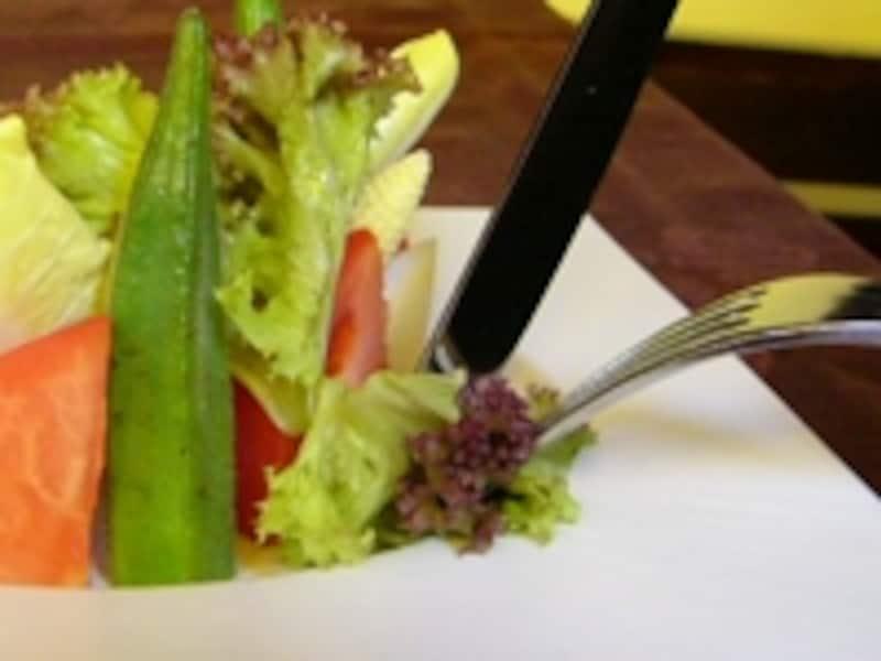 レタスなどの野菜は、折りたたんで厚みを持たせるとフォークに刺しやすくなります。