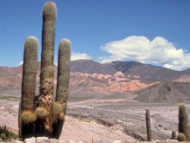 ブエノスアイレスの都会では味わえない景色を探しに行こう 写真提供:アルゼンチン観光局