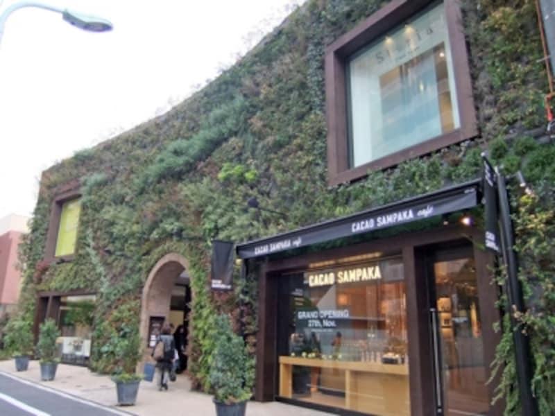 壁面緑化の建物が目印