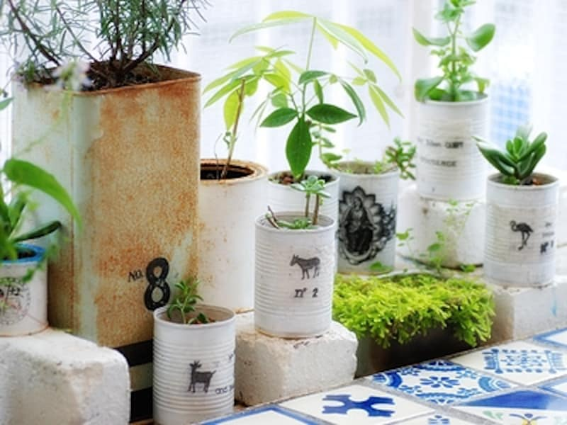 植物たちの鉢もオーナーの手作り。