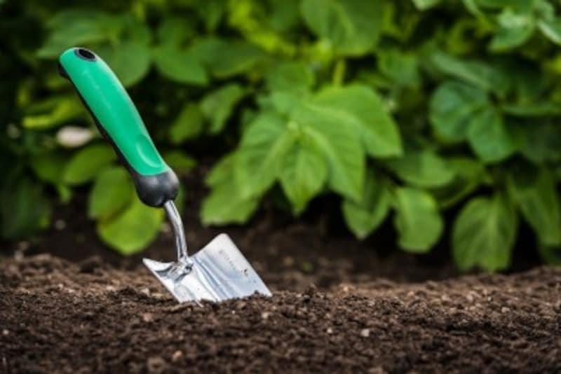 家庭菜園の肥料の種類とは