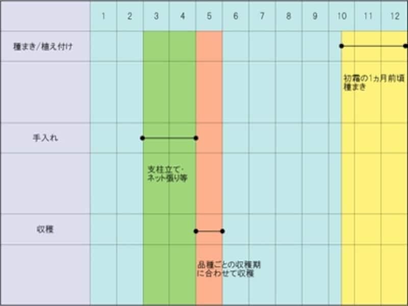 エンドウマメの栽培スケジュール