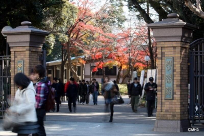 広大な自然のある「学習院目白キャンパス」