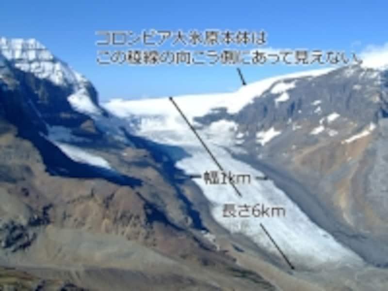 アサバスカ氷河とコロンビア大氷原の関係undefined(C)TravelAlberta