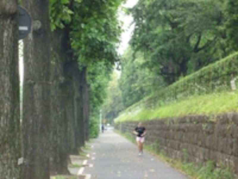 赤坂離宮周回コースも空き空き