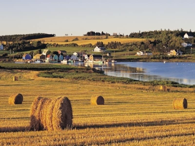のどかな農場風景は典型的な島のひとコマ(C)TourismPrinceEdwardIsland