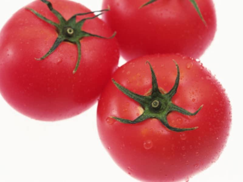 トマト鍋が人気