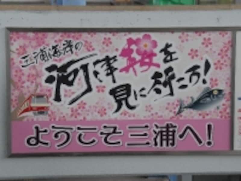 河津桜まつりポスター