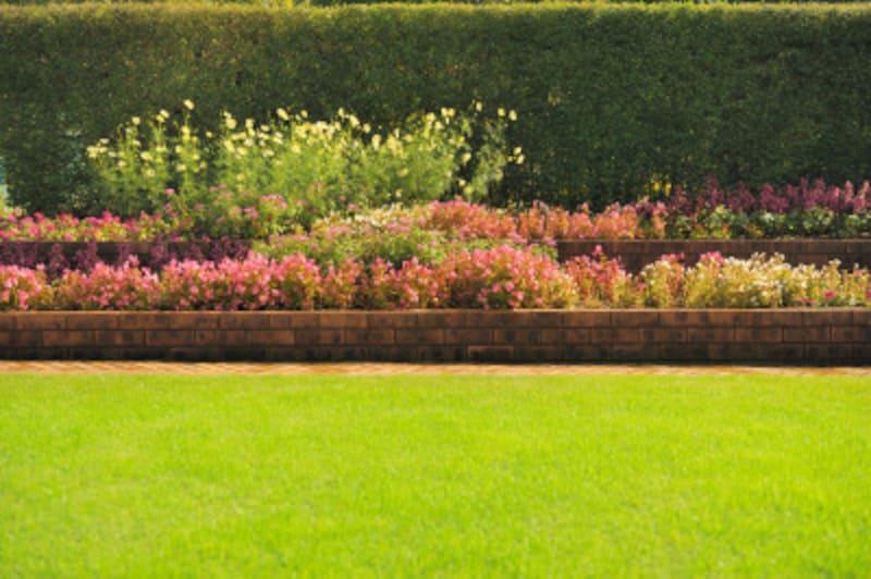 生垣は、庭の背景にもなる