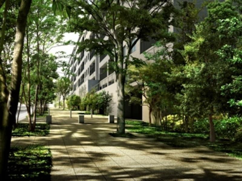 敷地東側約167mに及ぶ並木道