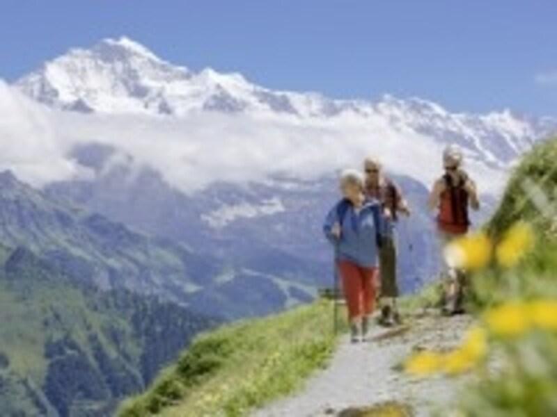 スイスアルプスハイキングのイメージ