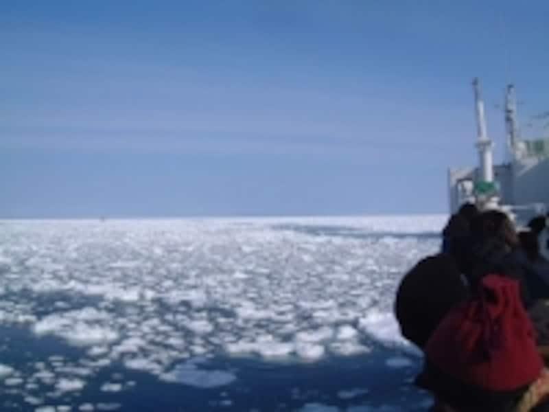 いよいよ流氷の中へ!