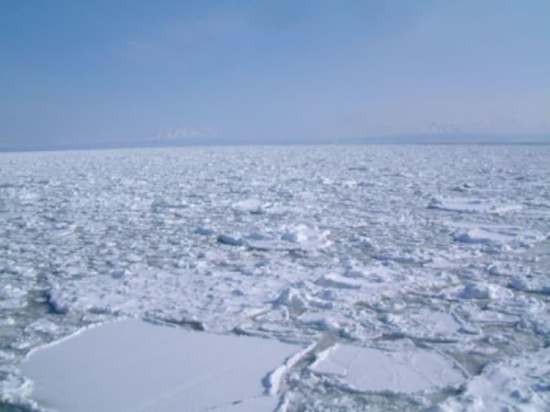 流氷原と知床連山