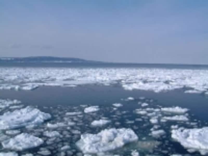 流氷の中から望む能取岬