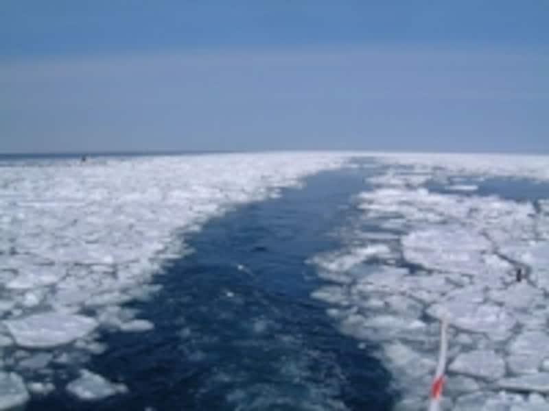 流氷観光砕氷船「おーろら」の航跡