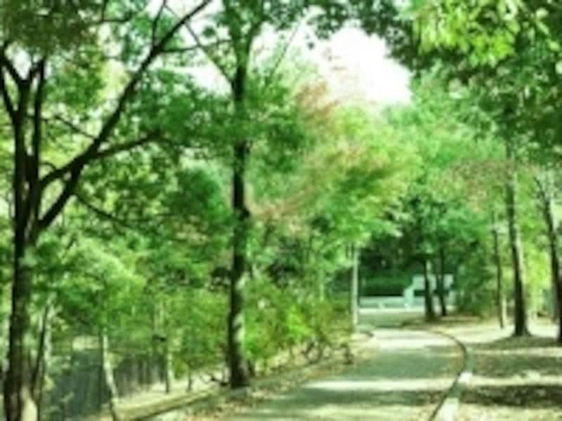 荏田富士塚公園(現地より約300m)