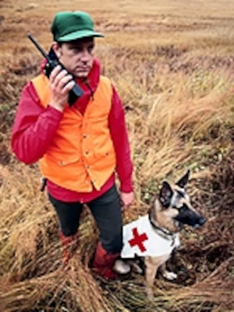 救助犬のイメージ