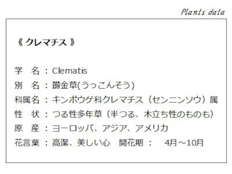 クレマチスのデータ