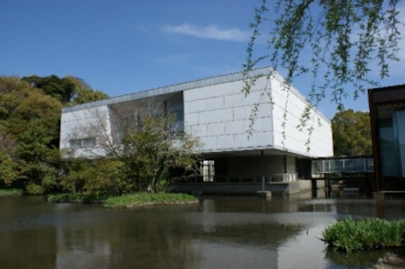 緑に囲まれた美術館
