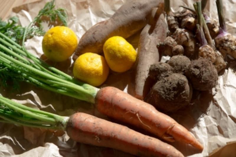 野菜室に泥が落ちていると、泥に含まれるカビの胞子のために野菜室の野菜がカビやすく、腐りやすくなってしまいます