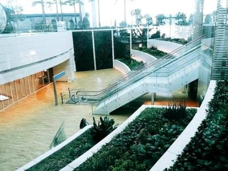 空港には珍しく、本物の植物が多く配置されている。壁面緑化も取り入れ、エコ要素だけでなくオシャレな印象も