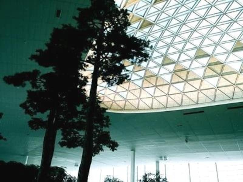 高い天井からは自然光が差し込んでいます。空港全体が明るいイメージ