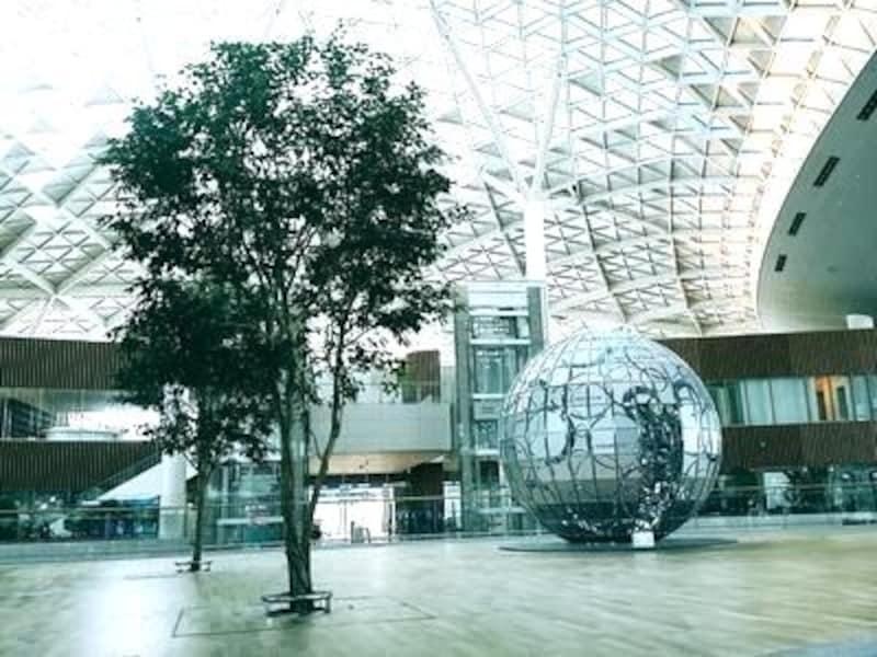 空港のイメージが少し変わりそう。植物はごく一部を除き全て本物です