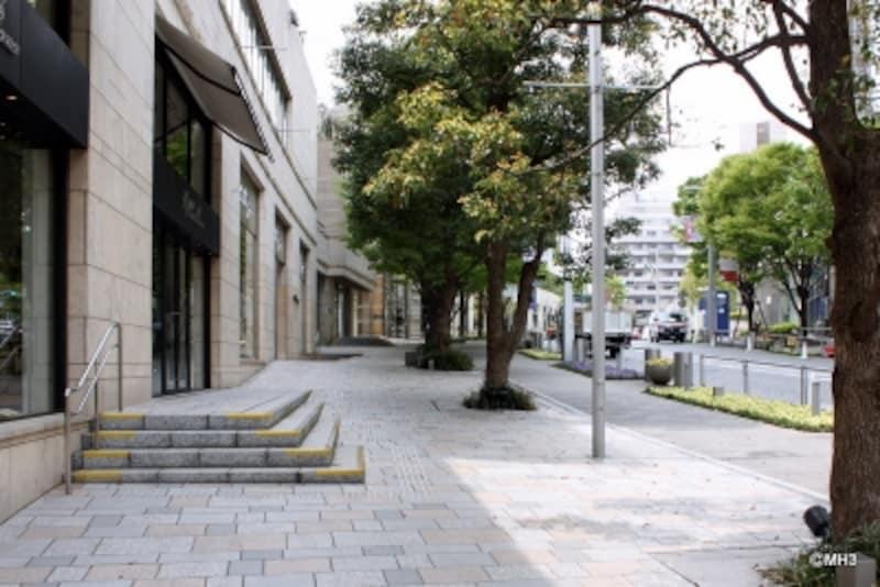 エントランスを出た風景。ケヤキ坂の街路樹も年々成長しているようだ。