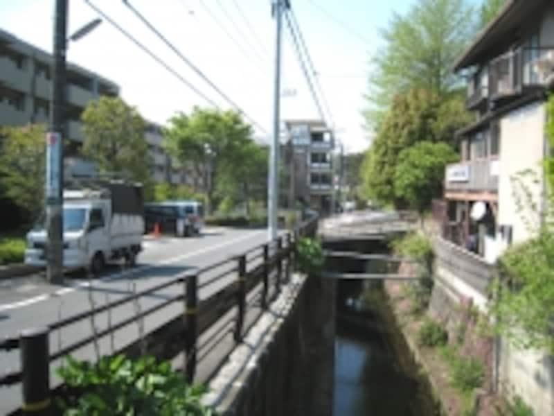 丸子川(次太夫堀)