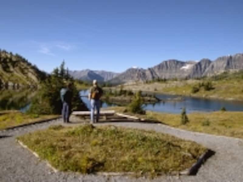 カナディアンロッキーで、歩くことなく2000mの高山地帯へダイレクトにアクセスできるのはサンシャインだけundefined(C)TravelAlberta