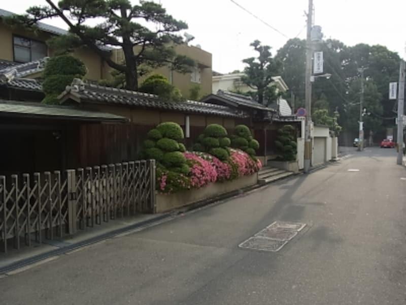 植木のいい家、帝塚山