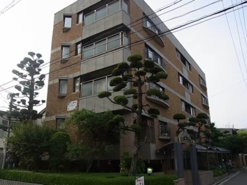 植栽の整った帝塚山のマンション