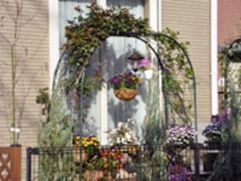 一戸建て住宅の庭