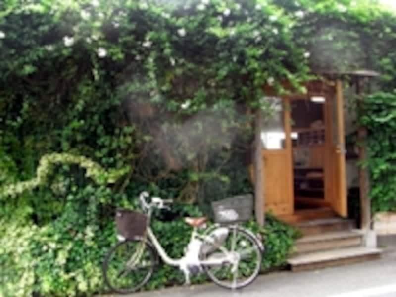 ジャスミンに覆われた「愛工房」の建物