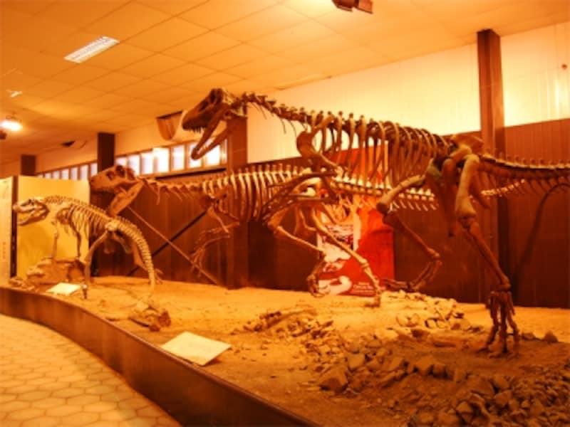 イシワラスト州立公園の入口脇には小さな博物館があり、発掘された化石のレプリカが展示されている