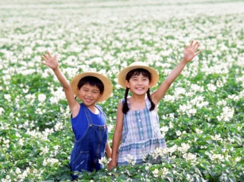 大自然を満喫できるスポットで北海道旅行を子供と楽しむ!