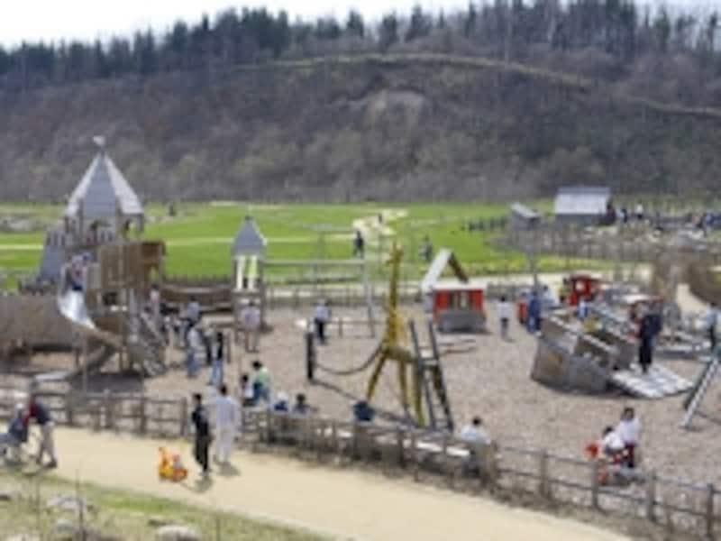 子供たちに大人気!木製遊具のプレイエリア
