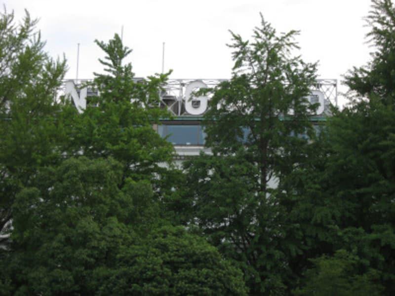 夏はイチョウの緑に隠れていますが、映画の中では「HOTELNEWGRAND」の文字がはっきりと見えます(2011年7月4日撮影)