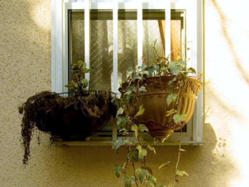 台風では壁や窓からも雨漏りすることが