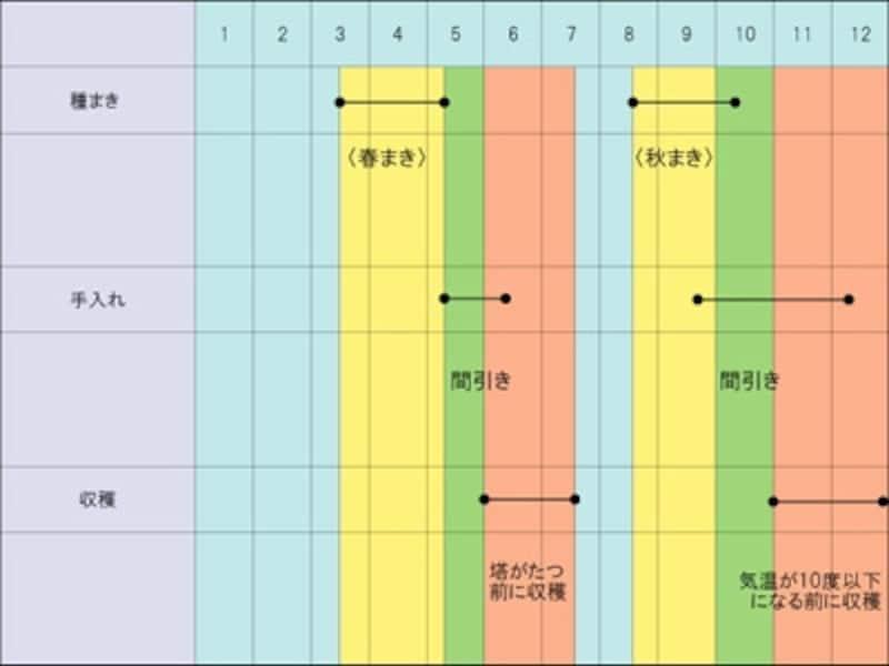 ダイコンundefined栽培カレンダー