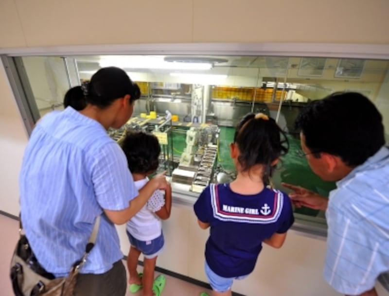 崎陽軒横浜工場の工場見学は、子供にも大人にも大人気