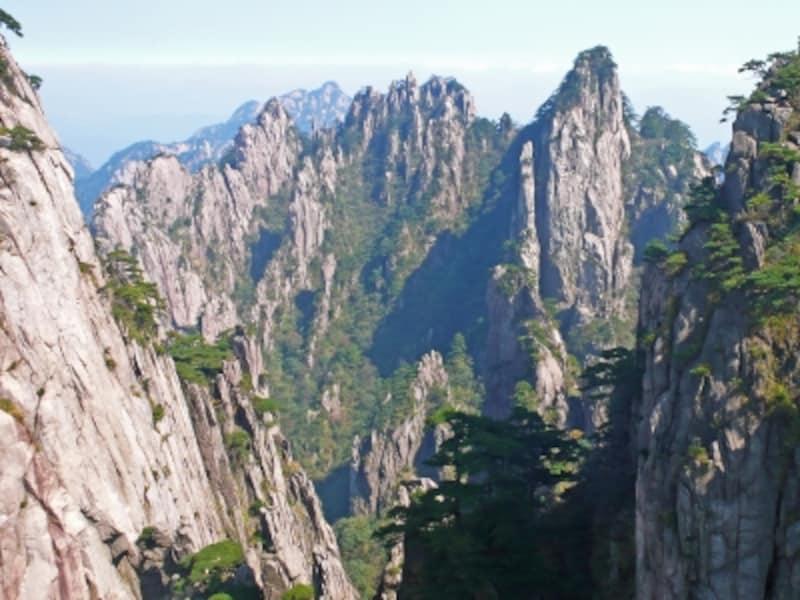松に飾られた稜線