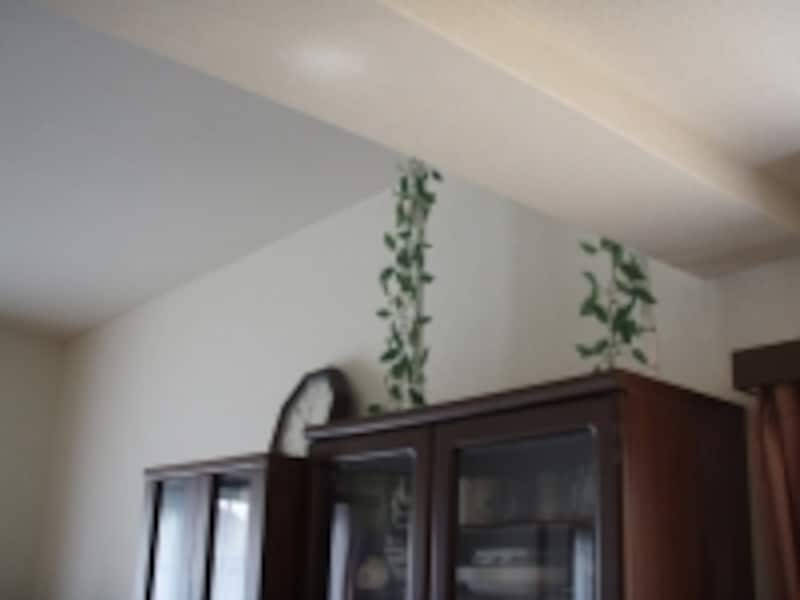 【写真B】背の低い食器棚に突っ張り棒を使用した例。突っ張り棒が丸見えとなる。