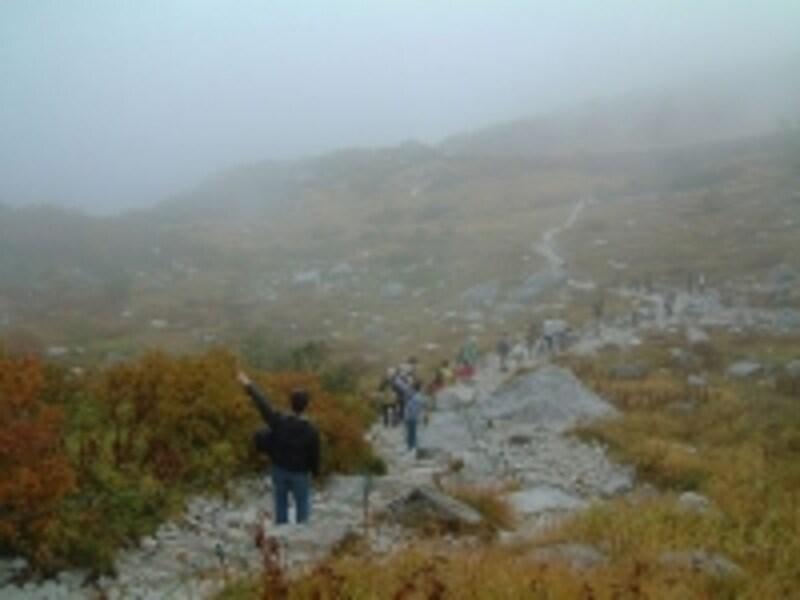 濃い霧に覆われた千畳敷カール(2010年10月2日撮影)