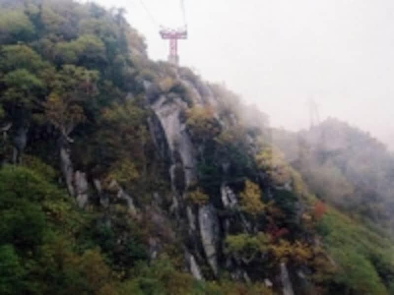 駒ヶ岳ロープウェイからの眺め/崖の紅葉・黄葉